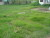 Prime Lot for Sale at Scout Tobias cor. Scout Limbaga QC (RUSH) - Image 1
