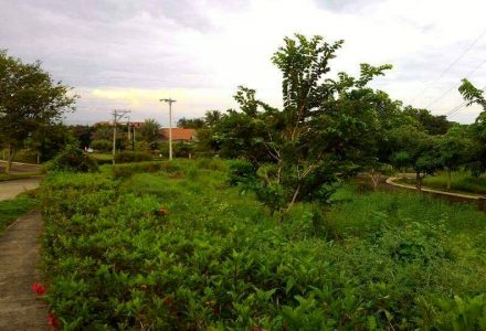 200sqm-Prime-Lot-in-Phase-1-Villa-de-Mercedes-Toril-Davao-City-2