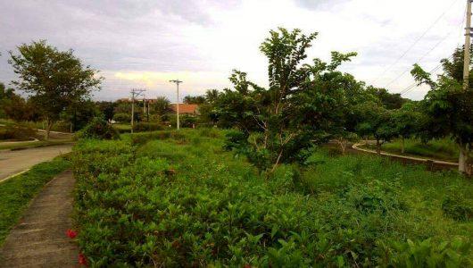 200sqm-Prime-Lot-in-Phase-1-Villa-de-Mercedes-Toril-Davao-City-2